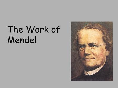 The Work of Mendel. Heredity: the passing of traits from parents to offspring Genetics: Study of heredity Traits -inherited characteristics.
