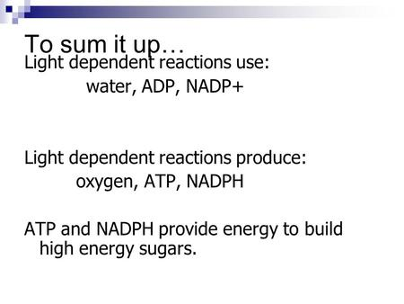 To sum it up… Light dependent reactions use: water, ADP, NADP+ Light dependent reactions produce: oxygen, ATP, NADPH ATP and NADPH provide energy to build.