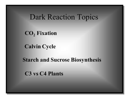 Dark Reaction Topics CO 2 Fixation Calvin Cycle C3 vs C4 Plants Starch and Sucrose Biosynthesis.