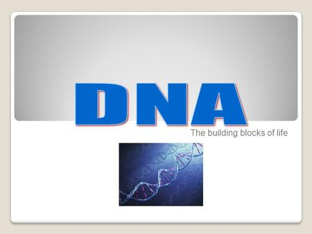 The building blocks of life. What is DNA? deoxyribonucleic acid An extremely long macromolecule that is the main component of chromosomes The material.