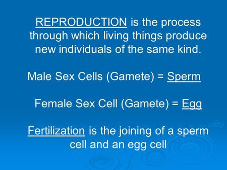 REPRODUCTION is the process through which living things produce new individuals of the same kind. Male Sex Cells (Gamete) = Sperm Female Sex Cell (Gamete)