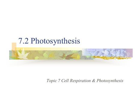 7.2 Photosynthesis Topic 7 Cell Respiration & Photosynthesis.