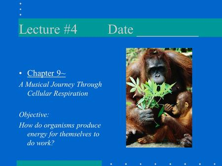 Lecture #4Date _________ Chapter 9~ A Musical Journey Through Cellular Respiration Objective: How do organisms produce energy for themselves to do work?