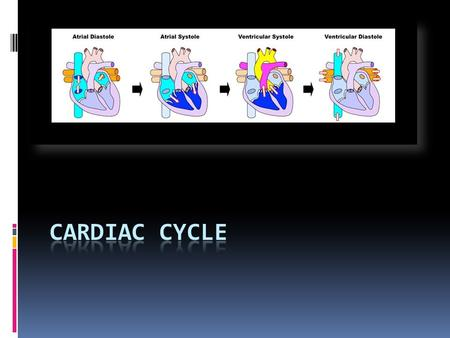 Cardiac Cycle  Refers to pattern of ;  Systole (contraction)  Diastole (relaxation)  Shown by the heart in one complete cycle  On average this 1.