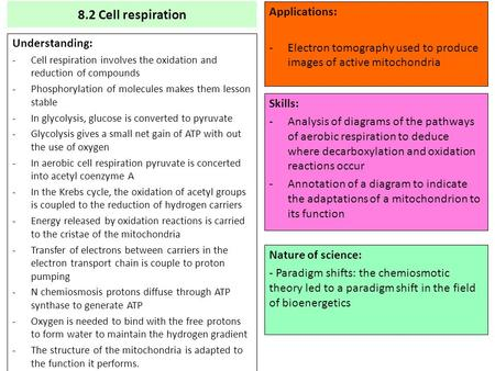 8.2 Cell respiration Understanding: -Cell respiration involves the oxidation and reduction of compounds -Phosphorylation of molecules makes them lesson.