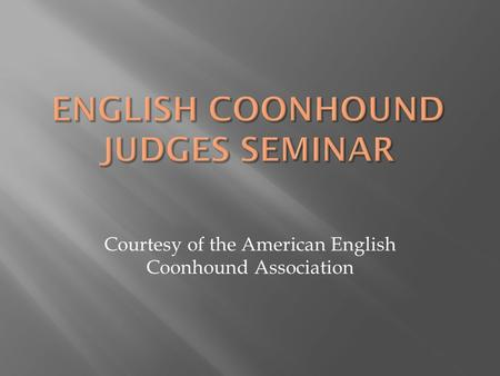 Courtesy of the American English Coonhound Association.