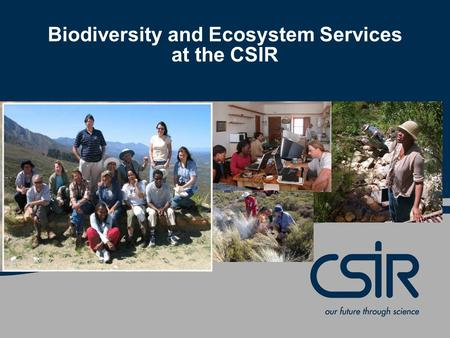 Biodiversity and Ecosystem Services at the CSIR. © CSIR 2007 www.csir.co.za What is biodiversity? Biological diversity – the variety and richness of plant.