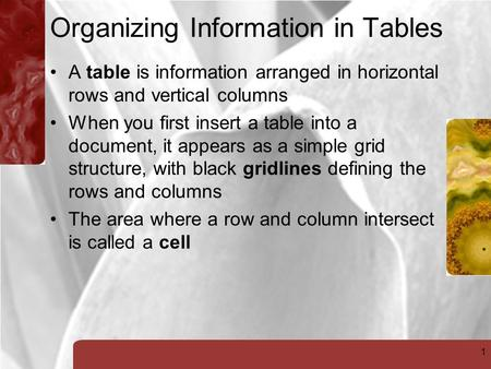 1 Organizing Information in Tables A table is information arranged in horizontal rows and vertical columns When you first insert a table into a document,