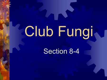 Club Fungi Section 8-4. Club Fungi  Club fungi are named for the structure that produces their sexual spores.  This structure is called a basidium which.