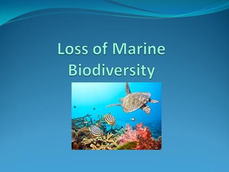 Biological biodiversity Is the term given to the variety of life on Earth and the variety within and between all species of plants, animals and micro-organisms.