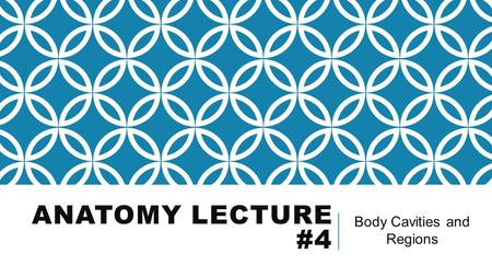 ANATOMY LECTURE #4 Body Cavities and Regions. BODY REGIONS Appendicular=upper and lower limbs. Axial=head, neck, and trunk.