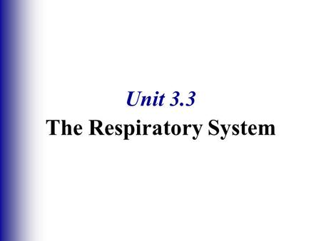 Unit 3.3 The Respiratory System