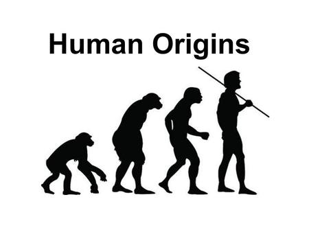 Human Origins. How do we find out about human origins????? Through the work of scientists such as Archaeologists Excavate sites in search of artifacts.