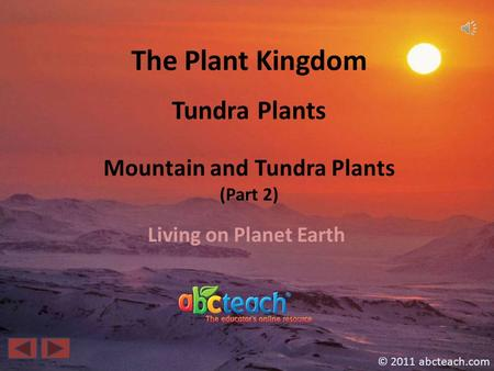 The Plant Kingdom Living on Planet Earth © 2011 abcteach.com Tundra Plants Mountain and Tundra Plants (Part 2)
