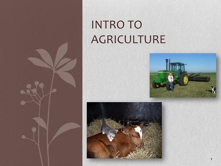 INTRO TO AGRICULTURE 1. Agriculture numbers 45% of the world population work in agriculture In North America, only 2- 3% of the population is employed.