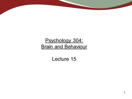 Psychology 304: Brain and Behaviour Lecture 15