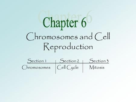 Chromosomes and Cell Reproduction Section 1 Section 2 Section 3 Chromosomes Cell Cycle Mitosis.
