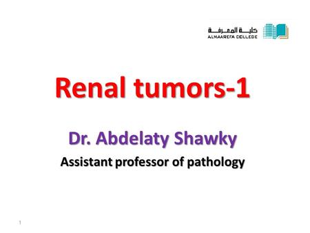 Renal tumors-1 Dr. Abdelaty Shawky Assistant professor of pathology 1.