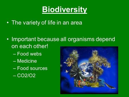 Biodiversity The variety of life in an area Important because all organisms depend on each other! –Food webs –Medicine –Food sources –CO2/O2.