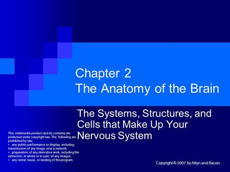 Copyright © 2007 by Allyn and Bacon Chapter 2 The Anatomy of the Brain The Systems, Structures, and Cells that Make Up Your Nervous System This multimedia.
