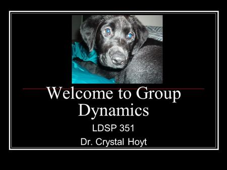Welcome to Group Dynamics LDSP 351 Dr. Crystal Hoyt.