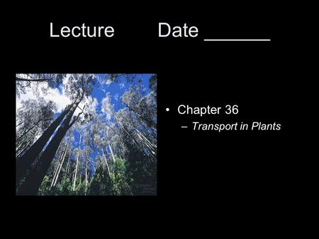Lecture Date ______ Chapter 36 –Transport in Plants.