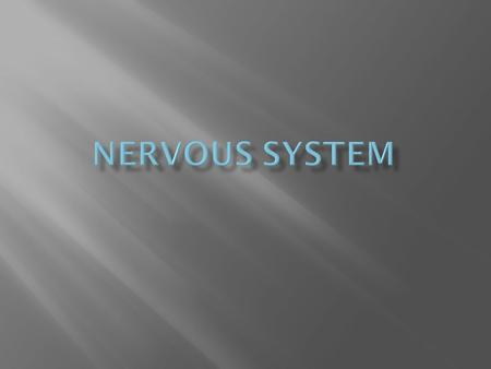 3 kinds of neurons: Sensory, Interneuron, and Motor neurons. Explain what each neuron does:  Sensory neurons --- picks up stimuli from the environment.