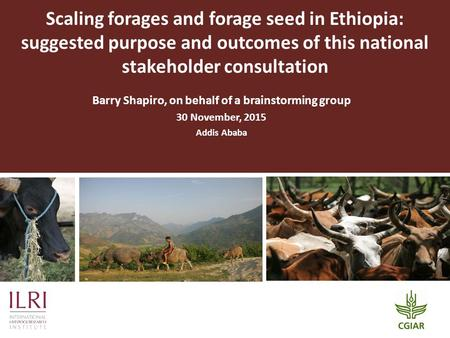 Scaling forages and forage seed in Ethiopia: suggested purpose and outcomes of this national stakeholder consultation Barry Shapiro, on behalf of a brainstorming.