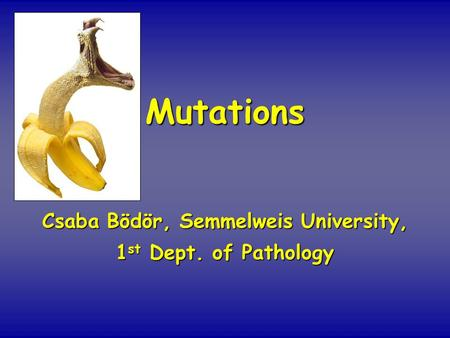 Mutations Csaba Bödör, Semmelweis University, 1 st Dept. of Pathology.