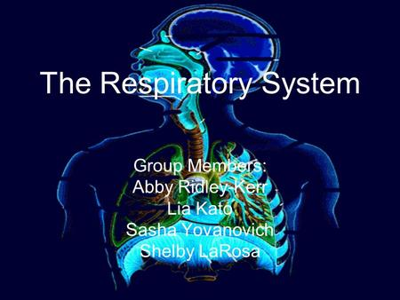 The Respiratory System Group Members: Abby Ridley-Kerr Lia Kato Sasha Yovanovich Shelby LaRosa.