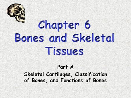 Part A Skeletal Cartilages, Classification of Bones, and Functions of Bones.