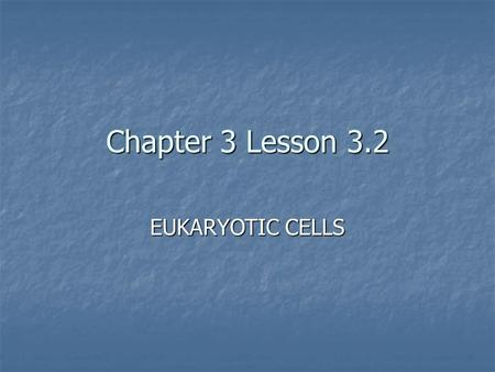 Chapter 3 Lesson 3.2 EUKARYOTIC CELLS. Eukaryotic Cells have many parts to help the cell stay alive. They are called ORGANELLES 1. Cell Wall 2. Cell Membrane.