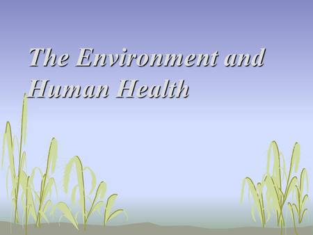 The Environment and Human Health. Pollution and Human Health Objectives 1.List five pollutants, their sources, and their possible effects on human health.