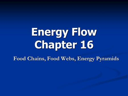 Energy Flow Chapter 16 Food Chains, Food Webs, Energy Pyramids.