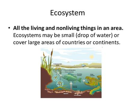 Ecosystem All the living and nonliving things in an area. Ecosystems may be small (drop of water) or cover large areas of countries or continents.