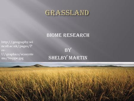 Biome Research By Shelby Martin  ncoll.ac.uk/pages/P re- U/graphics/ecosyste ms/Steppe.jpg.