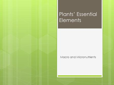 Plants' Essential Elements Macro and Micronutrients.