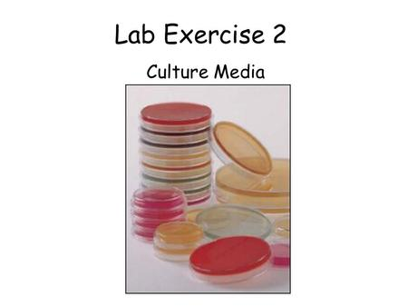 Lab Exercise 2 Culture Media. General Purpose Media: Nutrient Broth and Nutrient Agar.