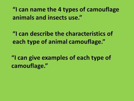 """I can name the 4 types of camouflage animals and insects use."" ""I can describe the characteristics of each type of animal camouflage."" ""I can give examples."