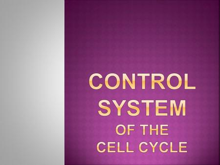  Made of certain proteins.  Directs the timing and sequence of events in the cell cycle.  If something goes wrong, Cells lose control of cell cycle.