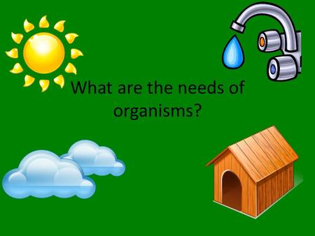 What are the needs of organisms?. FOOD All organisms need food to survive. – How do organisms obtain energy? FROM FOOD Organisms that can make their own.