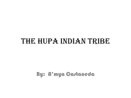 THE HUPA INDIAN TRIBE By: A'mya Castaneda. They made the men's house out of rocks and wood. It is where the men slept, worked and socialized.