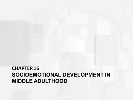 CHAPTER 16 SOCIOEMOTIONAL DEVELOPMENT IN MIDDLE ADULTHOOD.