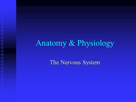 Anatomy & Physiology The Nervous System. Organization of the Nervous System Central Nervous System (CNS): consists of the brain and spinal cord, which.
