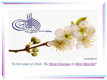 In the name of Allah, The Most Gracious & Most MercifulMost GraciousMost Merciful.
