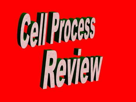 Cell Process Review 100 200 100 200 300 400 500 300 400 500 100 200 300 400 500 100 200 300 400 500 100 200 300 400 500 CellsPicture ThisDiffusionOsmosisMove.