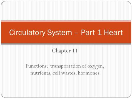 Chapter 11 Functions: transportation of oxygen, nutrients, cell wastes, hormones Circulatory System – Part 1 Heart.