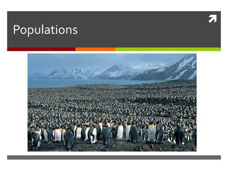  Populations. What is a population?  Population: a group of organisms all of the same species, which interbreed and live in the same place at the same.