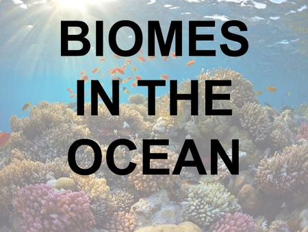 BIOMES IN THE OCEAN.