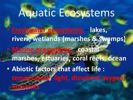 Aquatic Ecosystems Freshwater ecosystems – lakes, rivers, wetlands (marshes & swamps) Marine ecosystems – coastal marshes, estuaries, coral reefs, ocean.
